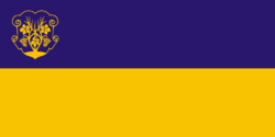 Flag of Uzhhorod.png