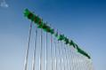 Flags of Aşgabat.png