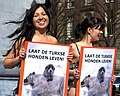 Flickr - NewsPhoto! - Uit de kleren voor Turkse zwerfhonden (2).jpg