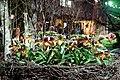 Florissimo 2015 145.jpg