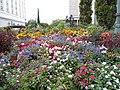 Flowerbed - panoramio (1).jpg