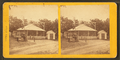 Flyg horses at Rcky Pt. R.I. (carousel), from Robert N. Dennis collection of stereoscopic views.png