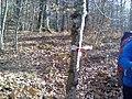 Fontana delle Brecce segnaletica orizzontale CAI 01.jpg