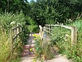Footbridge on Cyclepath, Fordwich - geograph.org.uk - 1402221.jpg