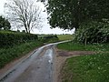 Footpath and Track on Hemblington Hall Road - geograph.org.uk - 435517.jpg