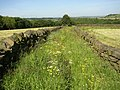 Footpath east of Calf Hey Farm, Barkisland - geograph.org.uk - 180084.jpg