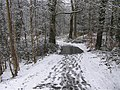 Footsteps in the snow, Omagh - geograph.org.uk - 1712860.jpg