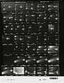 Ford A2441 NLGRF photo contact sheet (1974-12-13)(Gerald Ford Library).jpg