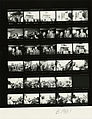Ford B1901 NLGRF photo contact sheet (1976-10-16)(Gerald Ford Library).jpg