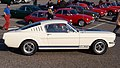 Ford Mustang dutch licence registration AM-80-03 pic3.JPG
