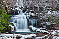 Forest-waterfall-icy-ravine1 - Virginia - ForestWander.jpg