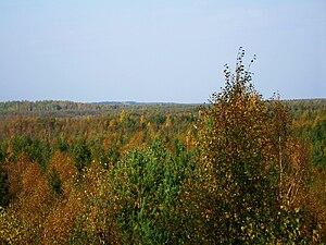 Põhja-Kõrvemaa Nature Reserve - Forests around Soodla River.