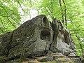 Foret de Bonneval, Vosges, France - panoramio (4).jpg