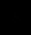 ForeverSpin logo.png