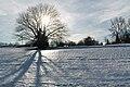 Fruitières de Nyon in winter - panoramio (1).jpg