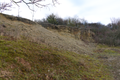 Fulda Mittelrode NR 163482 Haimberg bei Mittelrode Lime Outcrop S c.png