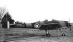 GAL-45 Owlet.png