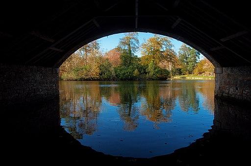 GGS - 201110 - Autumn Leaves Gosford House (6251512030)
