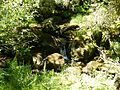 Galicia landscape.jpg