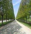 Gardens of Versailles (5986787101).jpg