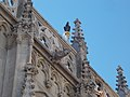 Gargoyle and the Raven, Matthias Church, 2016 Budapest.jpg