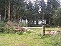 Gate into woods near Kenn - geograph.org.uk - 950982.jpg