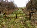 Gate on the Scots Dyke - geograph.org.uk - 353304.jpg