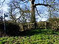 Gate to the fields - geograph.org.uk - 717196.jpg