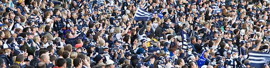 Geelong Football Club Wikipedia