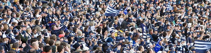 Geelong's supporters came out in force in the 2009 Grand Final against St Kilda Geelong Cats supporters.jpg