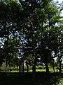 Geibeltbad Pirna Rottwerndorfer Str 56 9.JPG