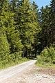 Geretsried- Waldweg - geo.hlipp.de - 25315.jpg