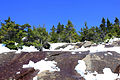 Gfp-new-york-adirondack-mountains-snow-on-the-mountain.jpg