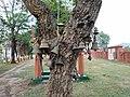 Ghanta at the Tripurasundari temple.jpg