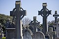 Glasnevin Cemetery - (442794468).jpg