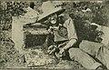 Gleanings in bee culture (1913) (14759070426).jpg