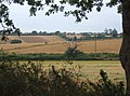 Glimpse across fields towards Shotley - geograph.org.uk - 941142.jpg