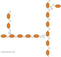 Glycogen chain.png