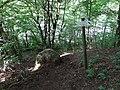 Gmina Jeleniewo, Poland - panoramio (91).jpg