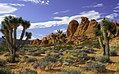 Gold Butte National Monument 9.jpg