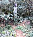 Grabstätte Hüttenweg 47 (Dahl) Manfred Bluth.jpg