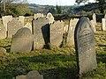 Gravestones, Cornwood - geograph.org.uk - 275032.jpg