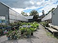 Griffin's Greenhouses (6164485962).jpg