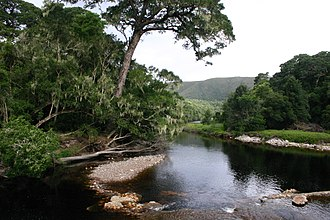Nature's Valley - View of the Groot River