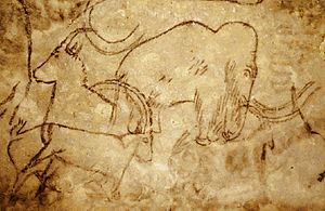 Mammoth - Paleolithic painting of mammoth from the Rouffignac Cave
