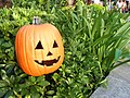 HK Ocean Park Halloween Pumpkin Sep-2013.JPG