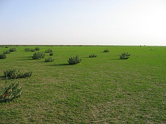 Hafar Al-Batin - Image: Hafar Al Batin in Spring 002
