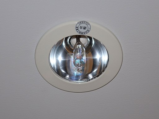 Halogen ceiling light