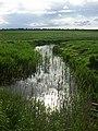 Halvergate Marshes - geograph.org.uk - 33143.jpg
