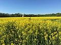 Hamm, Germany - panoramio (5938).jpg